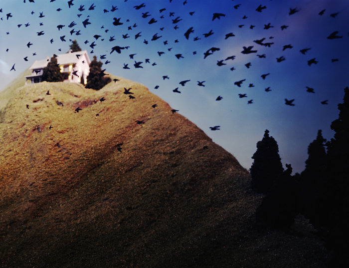Birds in Flight by Lori Nix