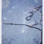 Louisiana Tree Series #10 by Wanda Boudreaux