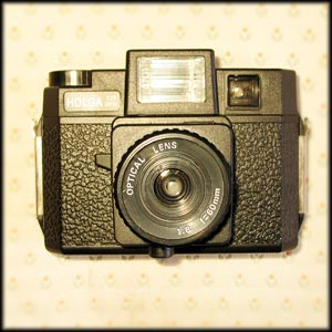 Holga by Cameron Stephen