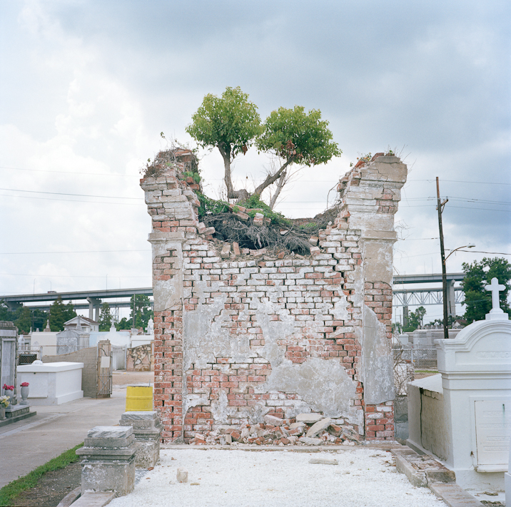 Colleen Mullins, (untitled) from the Urban Forest project.