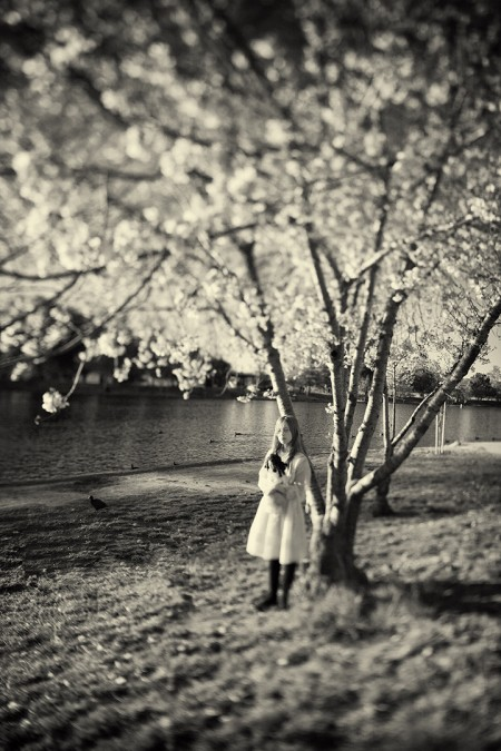 Carolyn Hampton: The Blooms Are Heavy