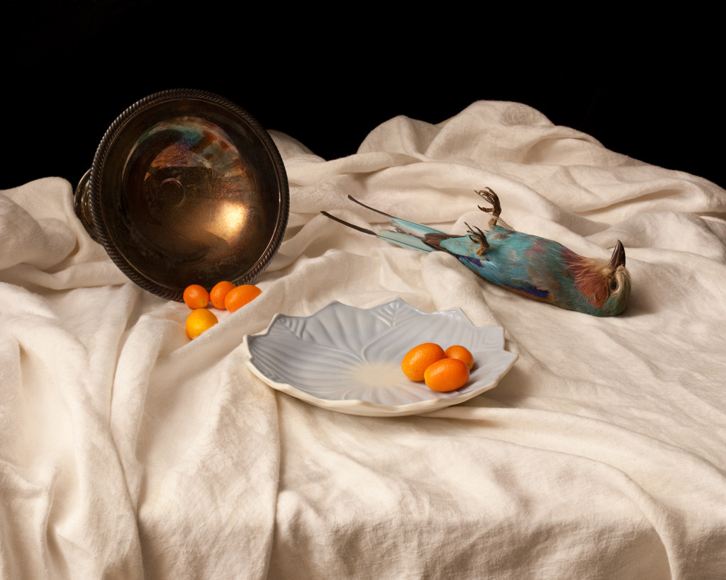 Sarah Cusimano Miles: Lilac breasted roller with kumquats