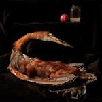 Sarah Cusimano Miles - Goliath Heron