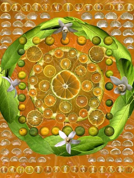 Muffin Bernstein - Satsuma Medicine Mandala