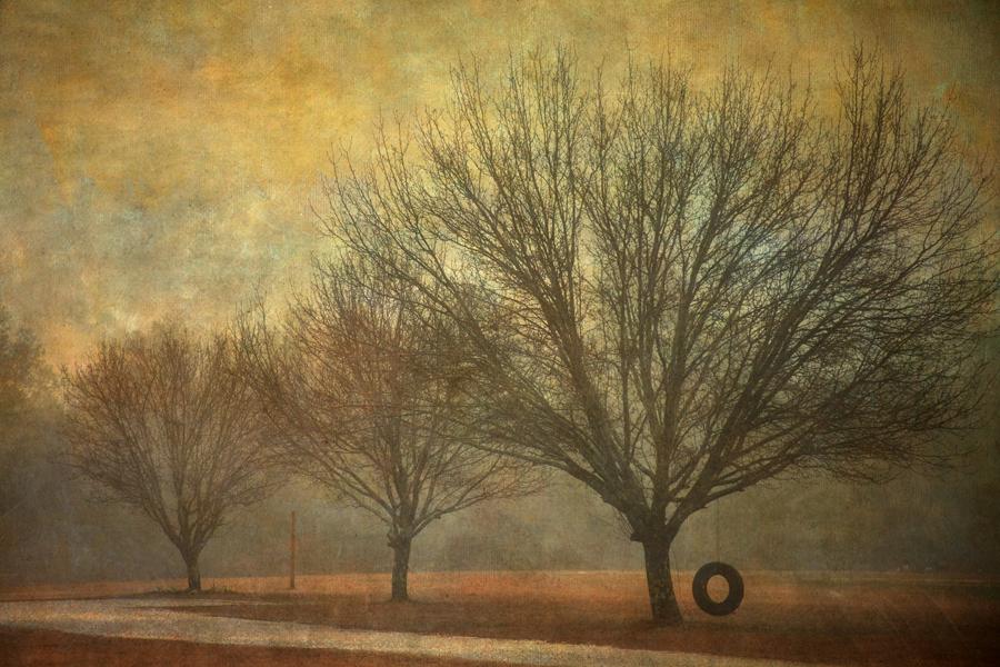Vicky Hunt - Winter