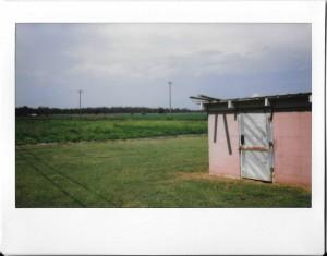 Ashley Gates - Eden, Mississippi