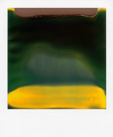 William Miller - Ruined Polaroid 40