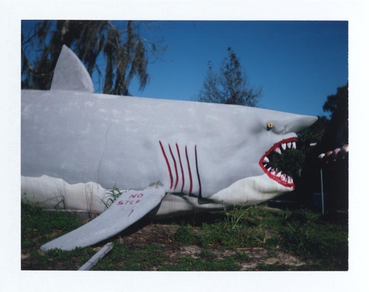 Richard McCabe - Highway 19, Florida