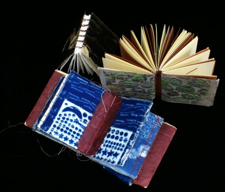 Cyanotype book by Anna Tomczak