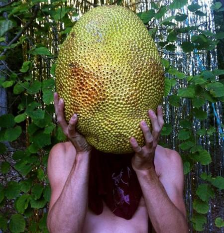 Naomi Shersty - Jackfruit, from the Swaddle Series