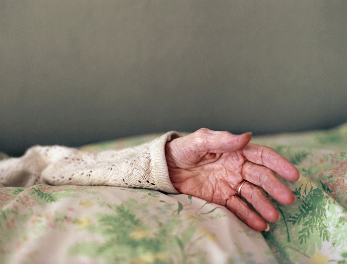 Monika Merva - Doki's Hand, 2010