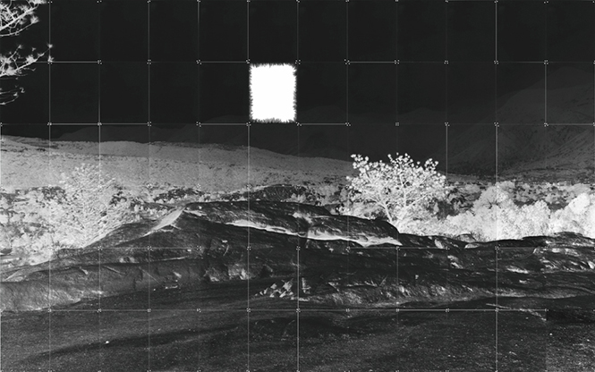 """Heather Oelklaus - View from the Garden, 2014 60x96"""" pinhole"""