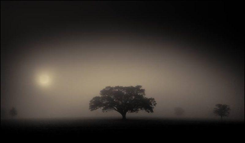 Robert Dutruch: La Poésie de la Terre | Claire Elizabeth Gallery | PhotoNOLA 2017