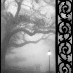 Louis Sahuc: Rain & Fog - Photo Works New Orleans