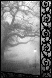 Louis Sahuc: Rain & Fog - Photo Works New Orleans