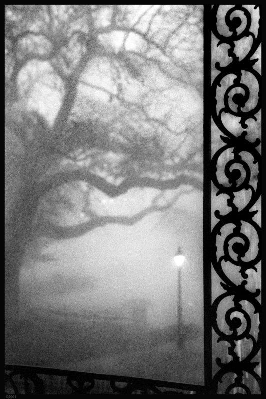 Louis Sahuc - Photo Works New Orleans