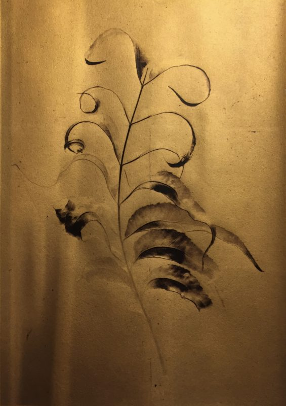 Flora: New Works by Marcy Palmer | Claire Elizabeth Galery | PhotoNOLA 2018