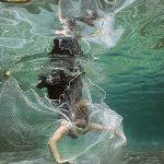 King Tides: Michel Varisco