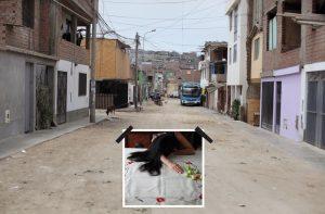 RuizGustafson_Claudia_Tus-calles-mientras-dormias